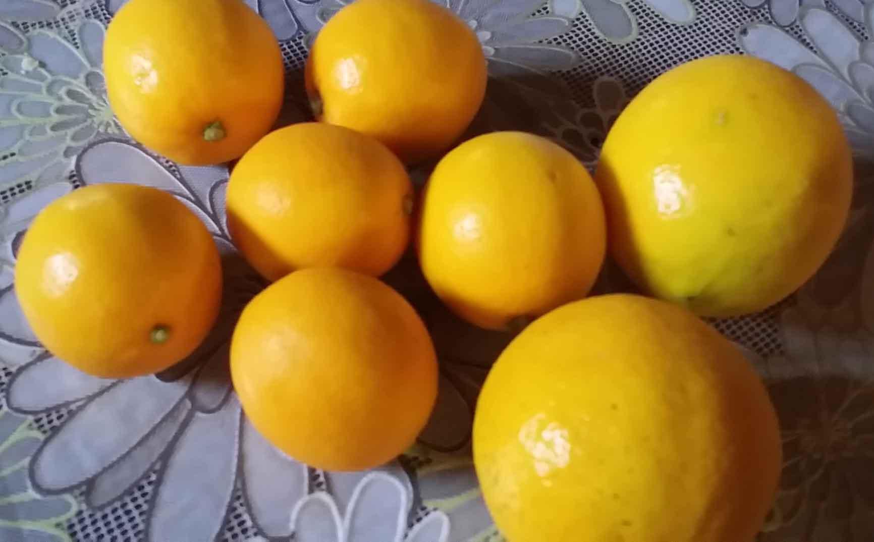 金柑ジャムとレモン酒